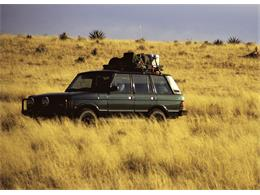 Picture of 1995 Range Rover located in Arizona Auction Vehicle Offered by Bring A Trailer - Q3SY
