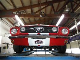 Picture of Classic 1966 Mustang located in Illinois - Q40M