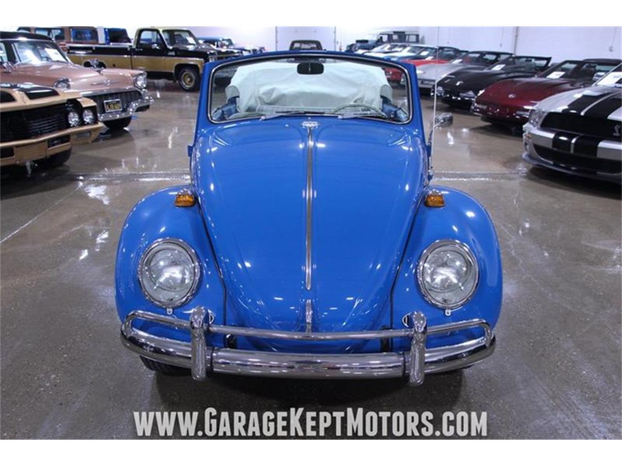 Large Picture of '66 Beetle - Q41N