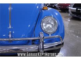 Picture of '66 Beetle - Q41N