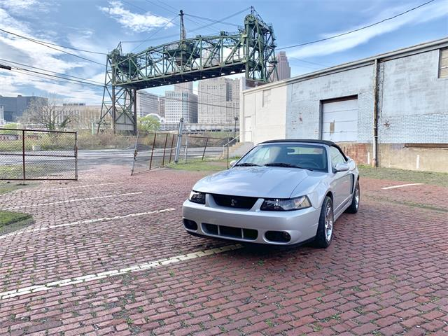 Picture of '04 Mustang - Q41X