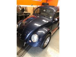Picture of '61 Beetle - Q45L