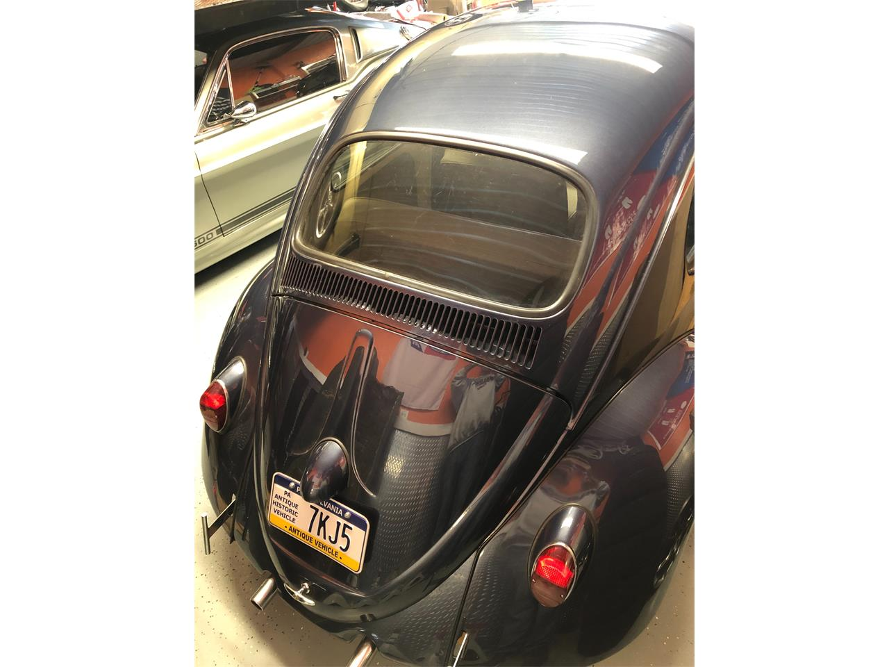 Large Picture of '61 Beetle - Q45L