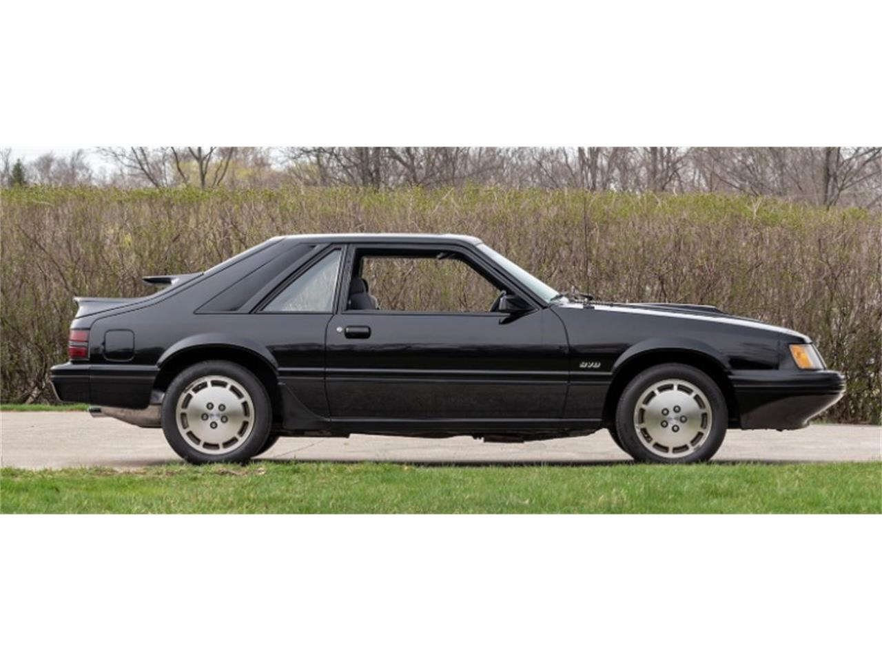 Large Picture of 1984 Ford Mustang located in Mundelein Illinois - $12,997.00 - Q46S