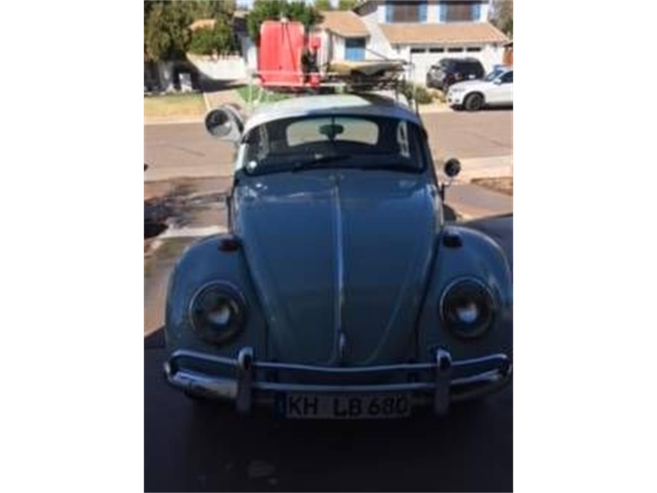 Large Picture of '66 Beetle - Q49S