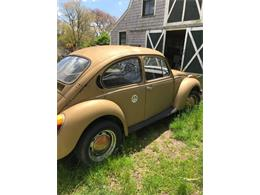 Picture of '74 Super Beetle - Q4B0
