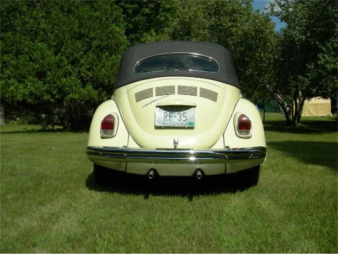 Large Picture of '70 Beetle - Q4C7