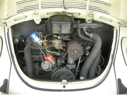 Picture of '70 Beetle - Q4C7