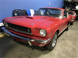 Picture of Classic '66 Shelby GT350 located in Napa Valley California Offered by Stephen Becker Automotive Group - Q4I9