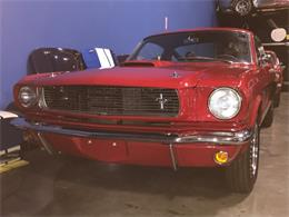 Picture of 1966 GT350 located in California - $230,000.00 Offered by Stephen Becker Automotive Group - Q4I9