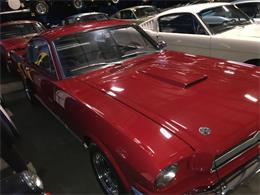 Picture of Classic '66 GT350 located in Napa Valley California Offered by Stephen Becker Automotive Group - Q4I9