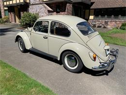 Picture of '67 Beetle - Q4RM