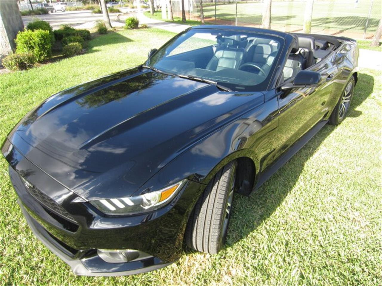 Large Picture of '16 Mustang - Q4U5