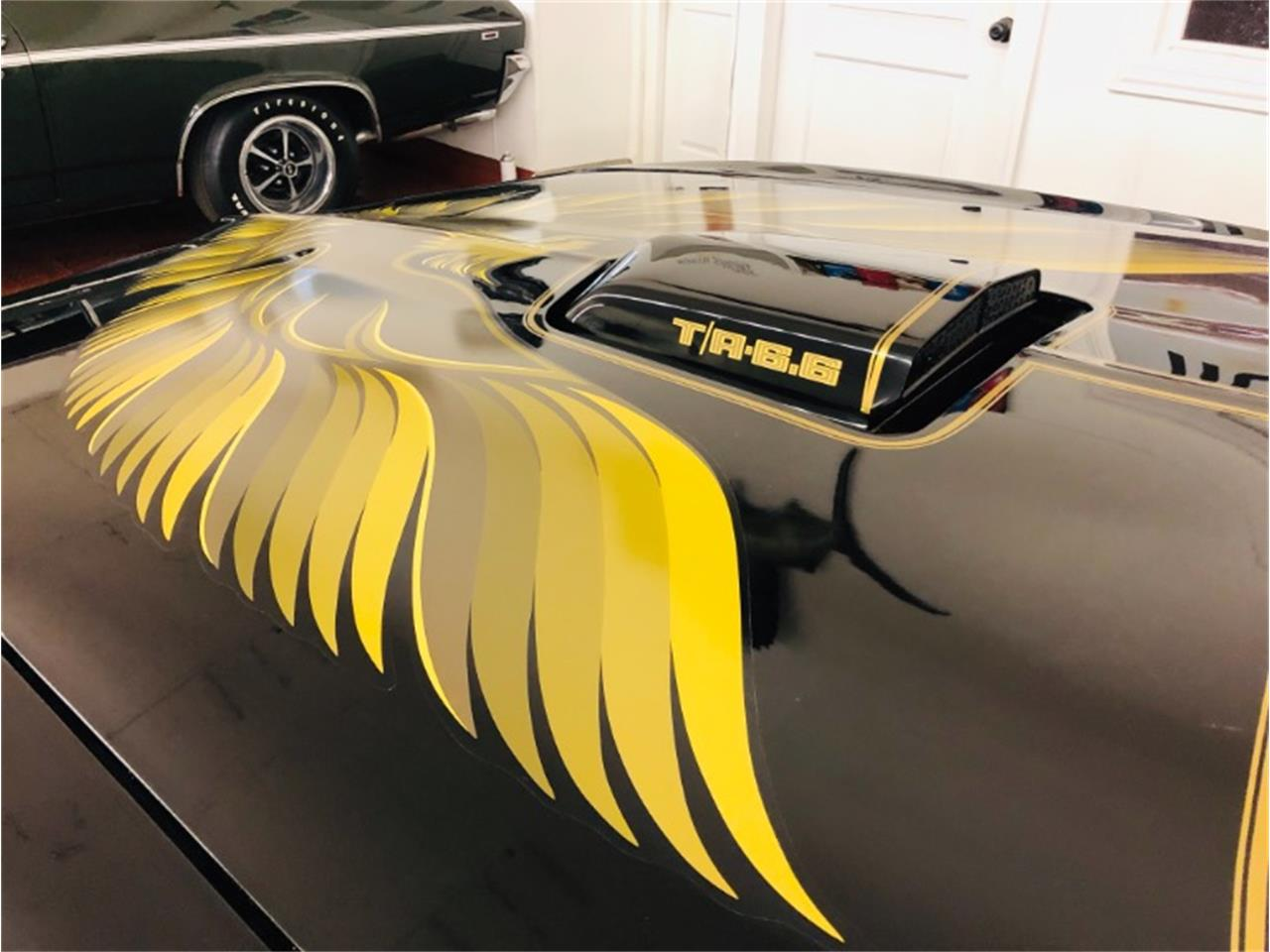 Large Picture of '79 Firebird Trans Am - Q52R
