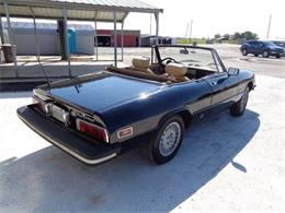 Picture of '79 Spider - Q535