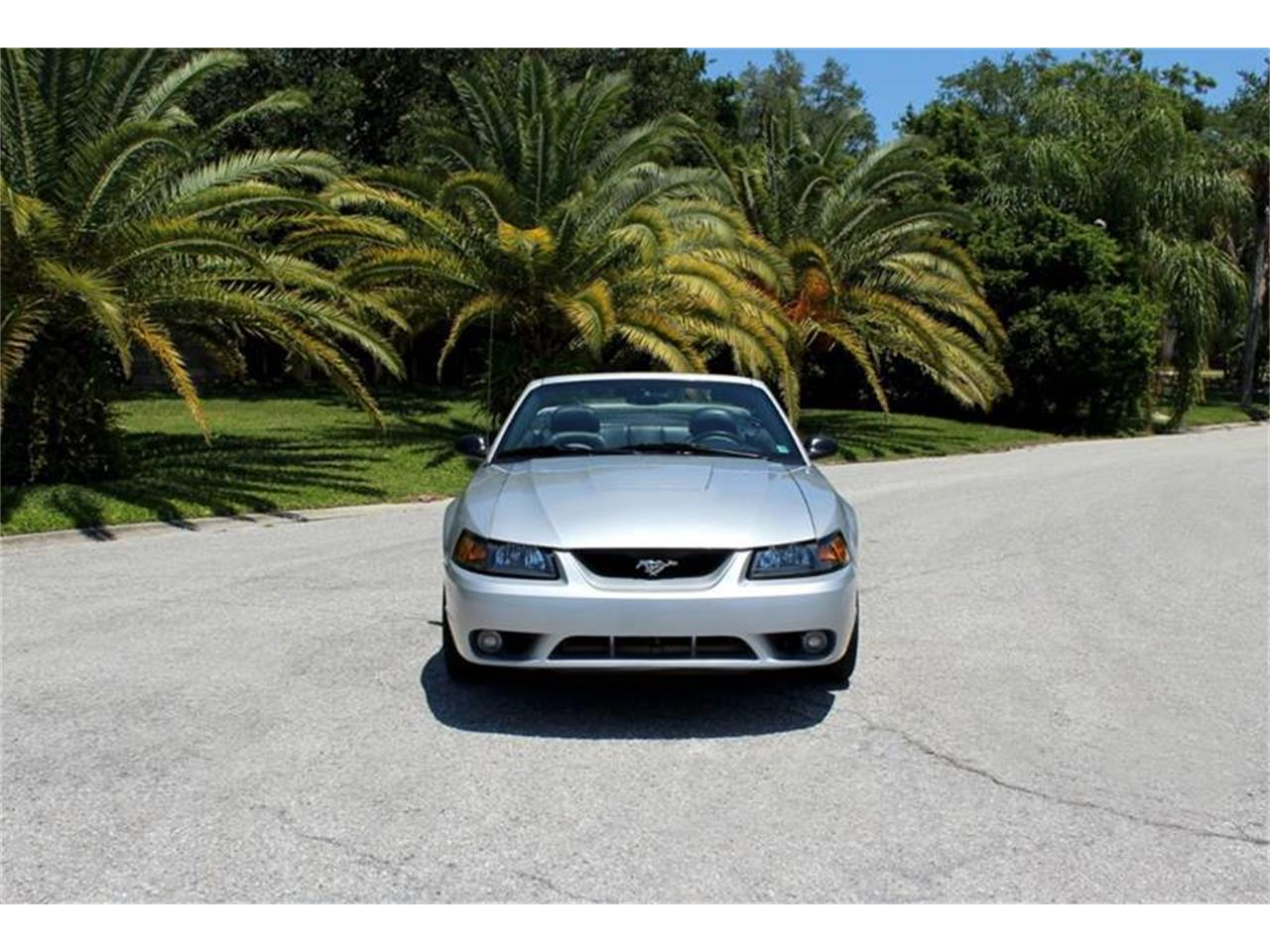 Large Picture of 2001 Ford Mustang SVT Cobra - $15,900.00 - PYE0