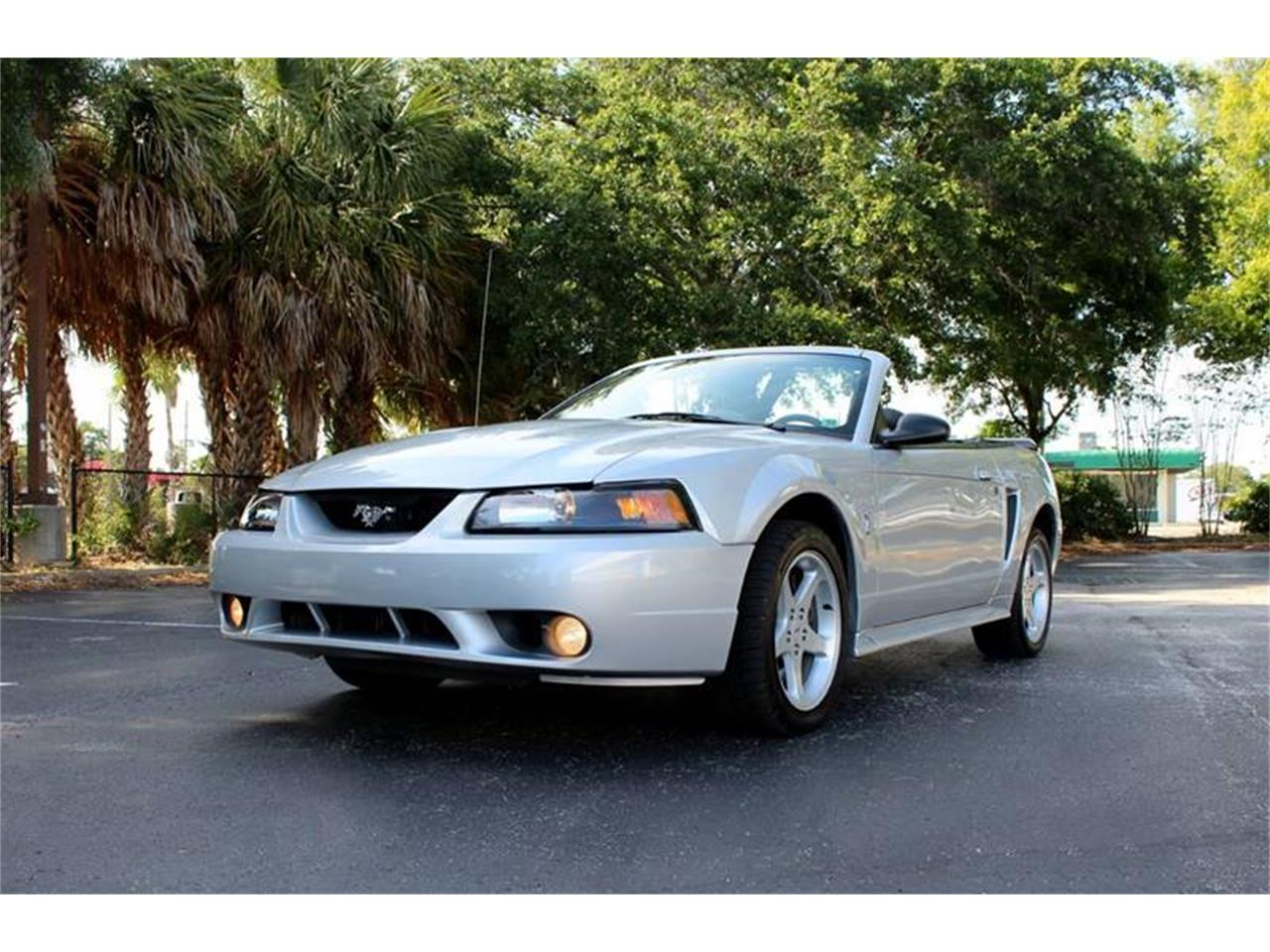 Large Picture of '01 Mustang SVT Cobra - PYE0