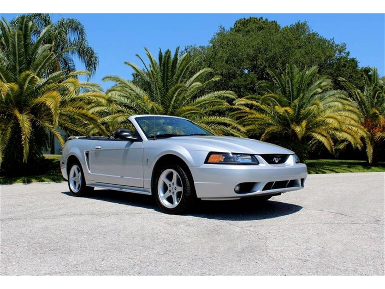 Large Picture of 2001 Mustang SVT Cobra located in Clearwater Florida Offered by PJ's Auto World - PYE0