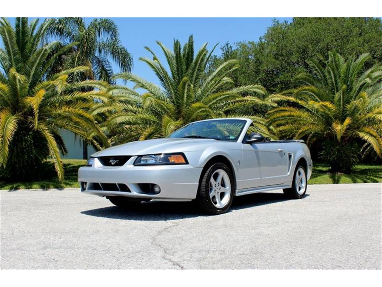Large Picture of 2001 Ford Mustang SVT Cobra - $15,900.00 Offered by PJ's Auto World - PYE0