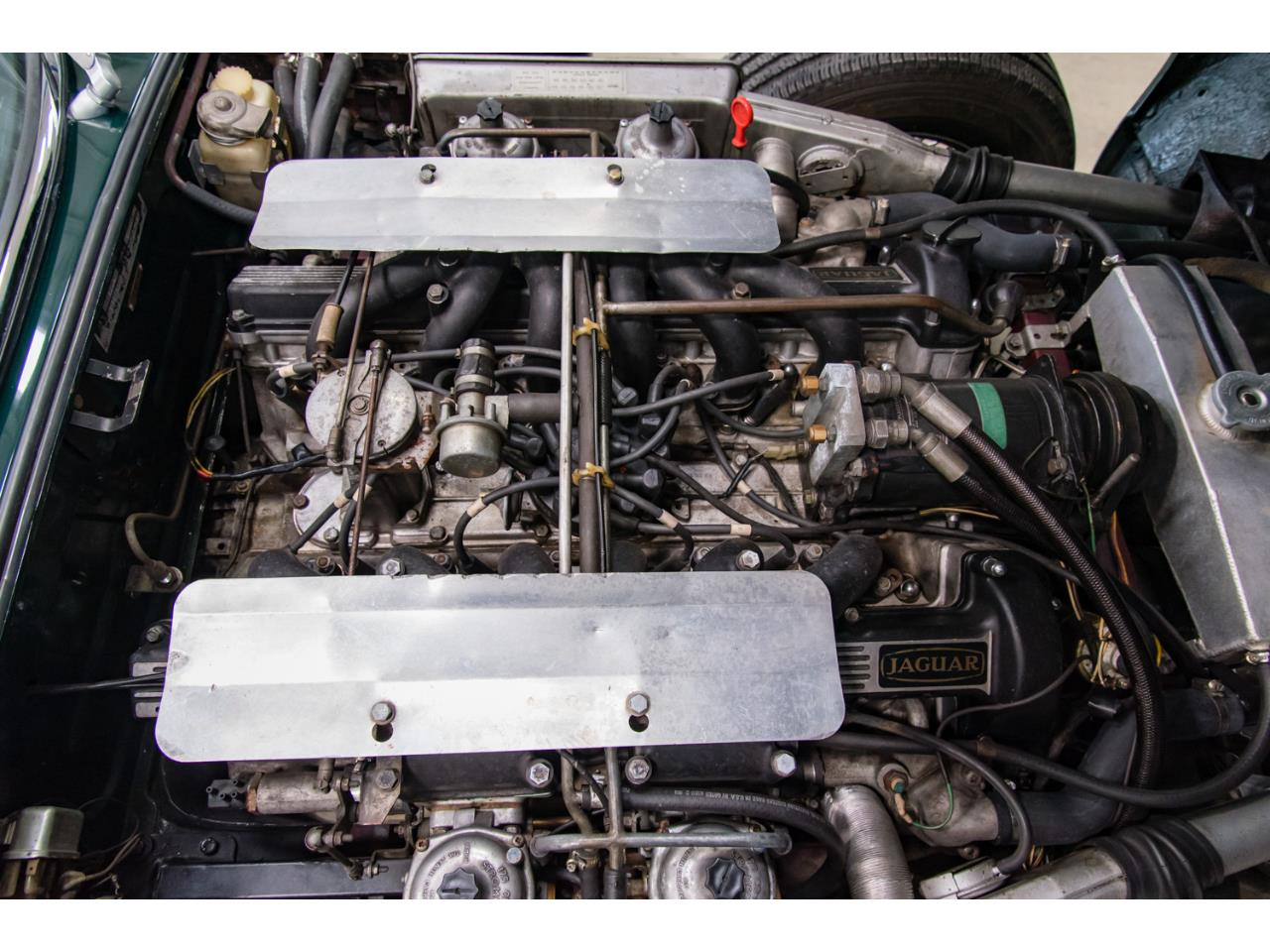 Large Picture of 1972 E-Type - Q55P