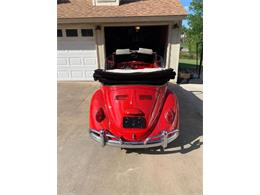 Picture of '65 Beetle Offered by Classic Car Deals - Q58P
