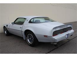 Picture of 1979 Pontiac Firebird Trans Am Auction Vehicle Offered by Lucky Collector Car Auctions - Q67P