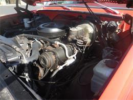 Picture of '78 C20 - Q6CJ