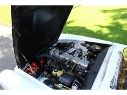 Picture of '64 230SL - Q6ID