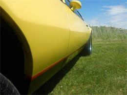 Picture of 1976 Pontiac Firebird - Q6J2