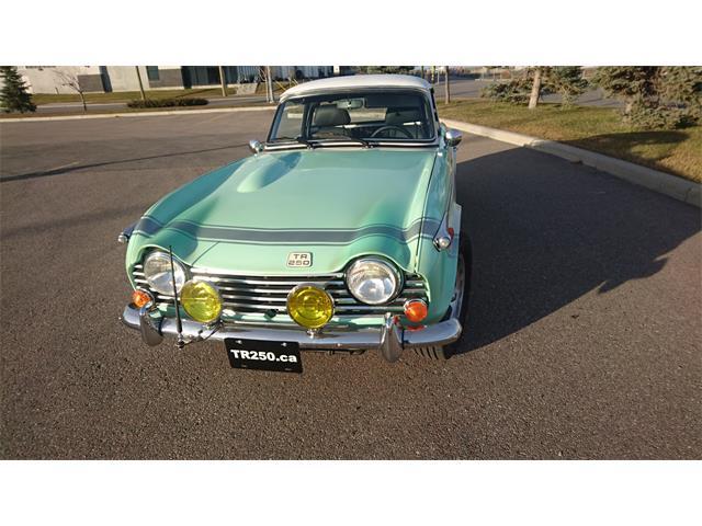 1968 Triumph TR250 for Sale on ClassicCars com on ClassicCars com