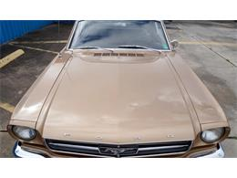 Picture of 1965 Ford Mustang - Q6QR