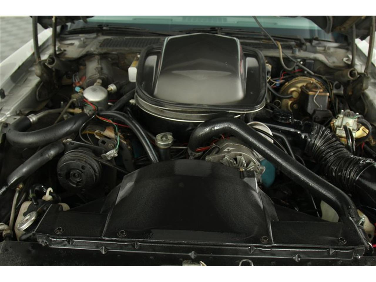 Large Picture of 1979 Pontiac Firebird Trans Am located in Elyria Ohio Offered by Sunnyside Chevrolet - Q6YC