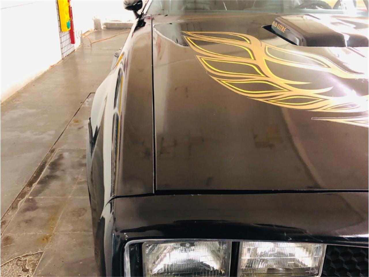 Large Picture of '77 Firebird Trans Am - Q5IN
