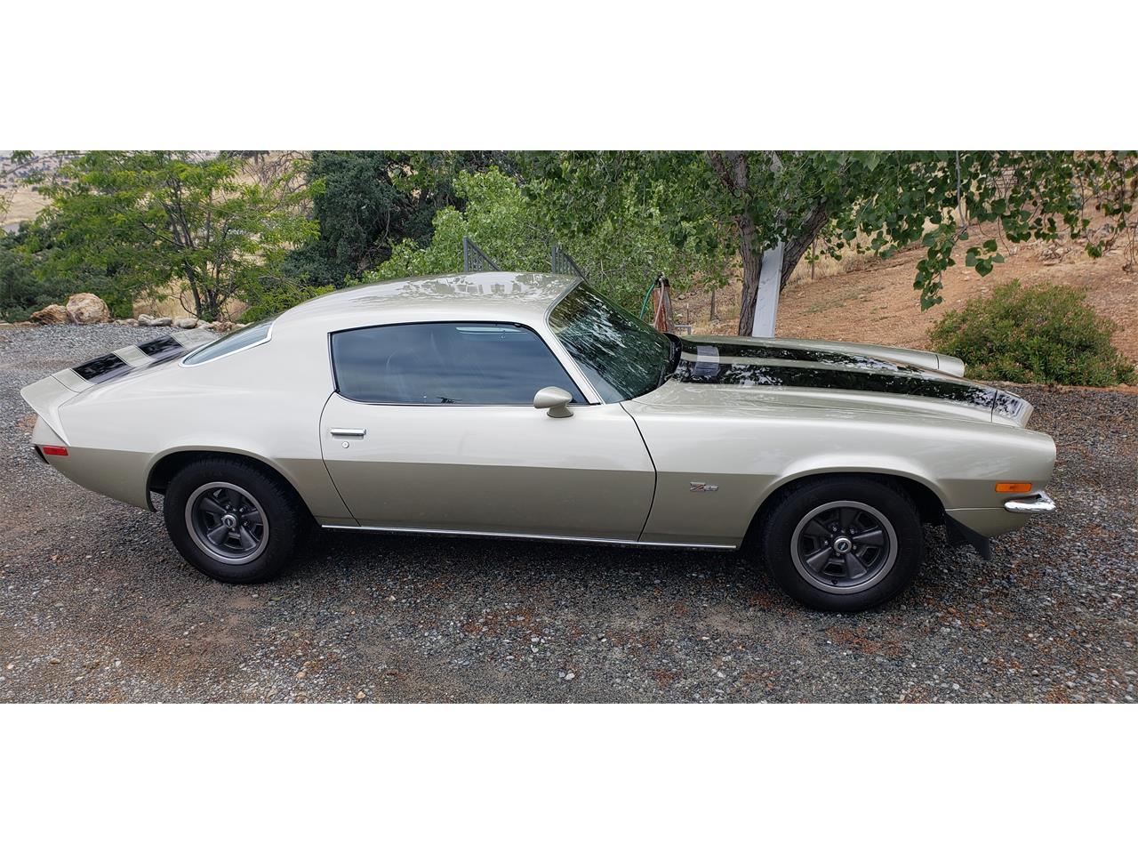 Large Picture of '73 Camaro - Q6YX
