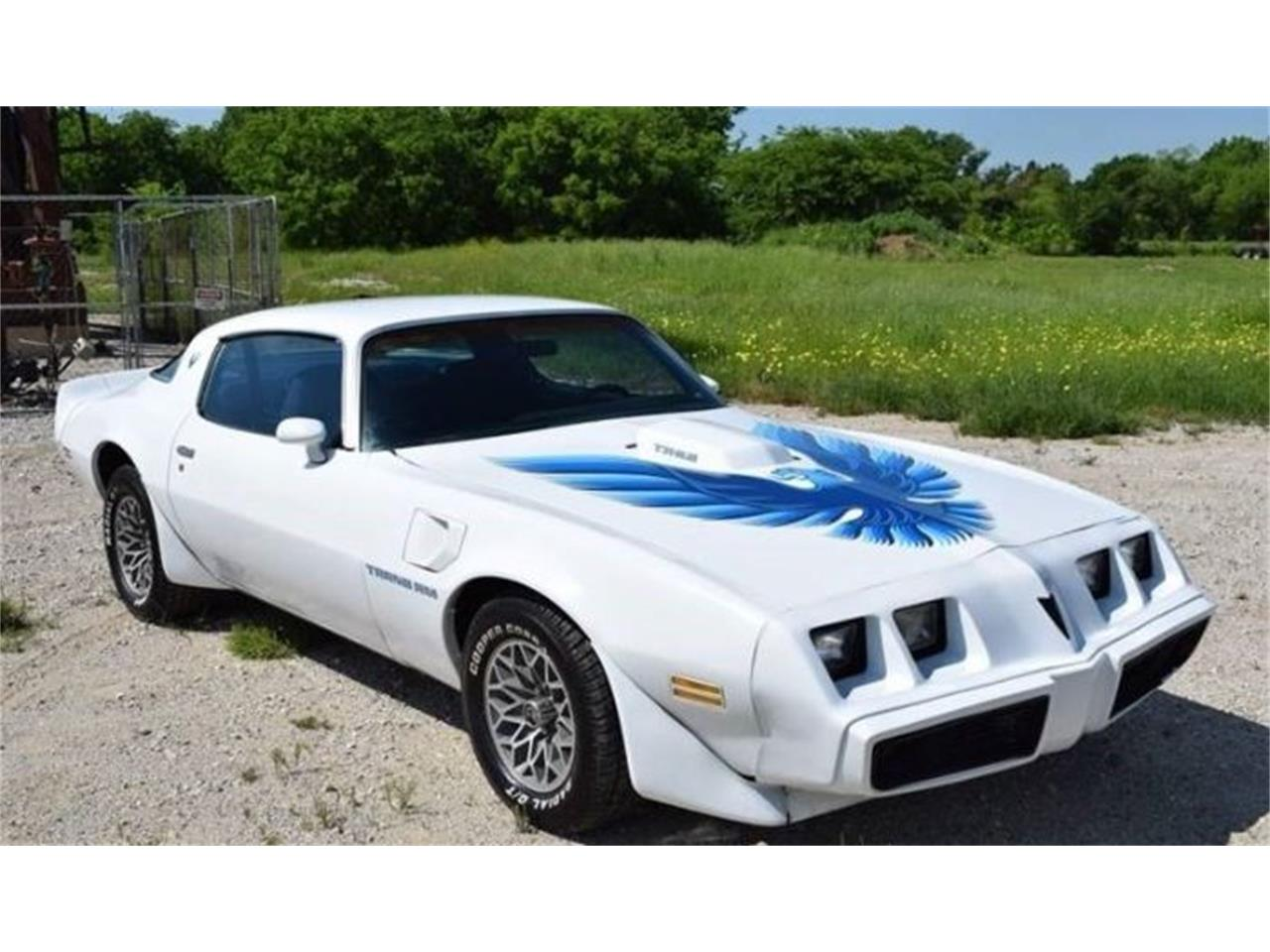 Large Picture of '80 Firebird Trans Am - Q7F1