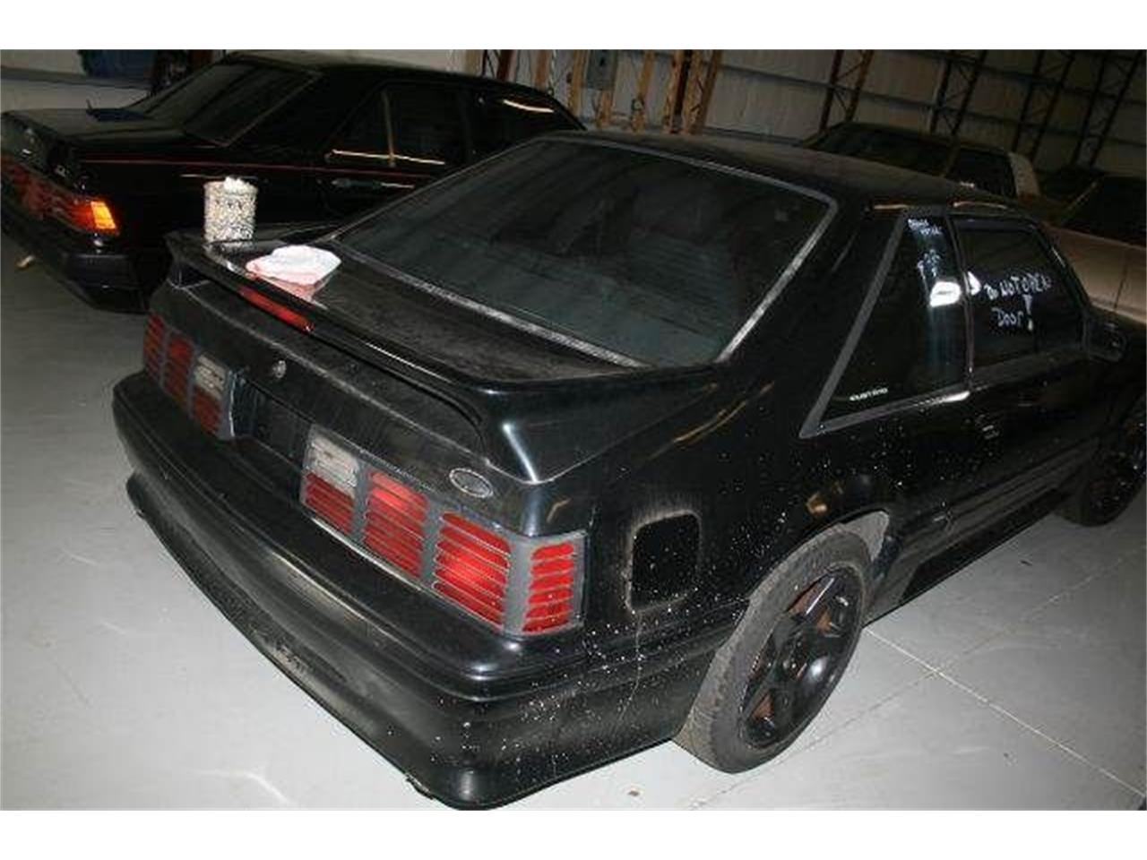Large Picture of '87 Mustang - Q7WW