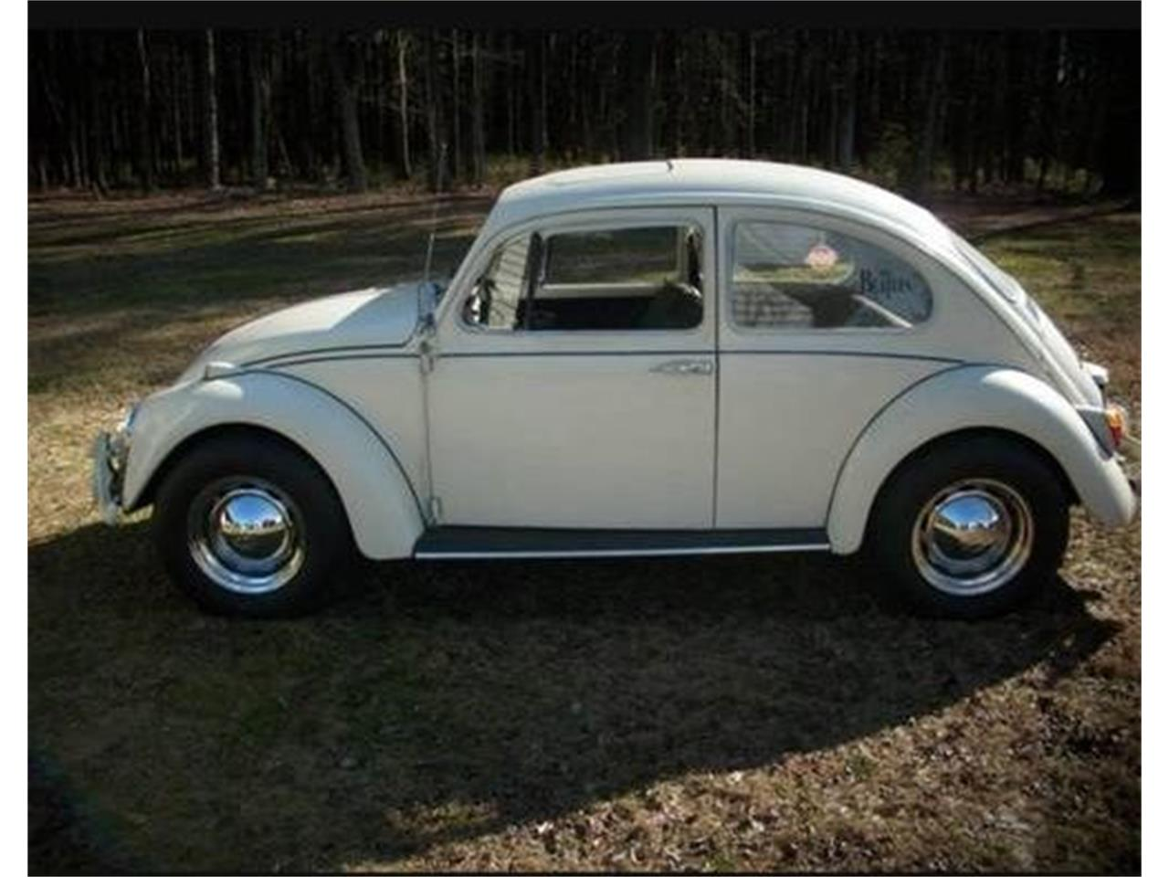 Large Picture of '67 Beetle - Q87F