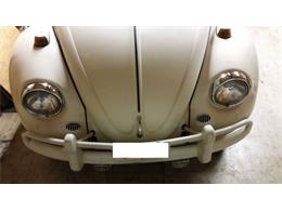 Picture of '67 Beetle - Q87F
