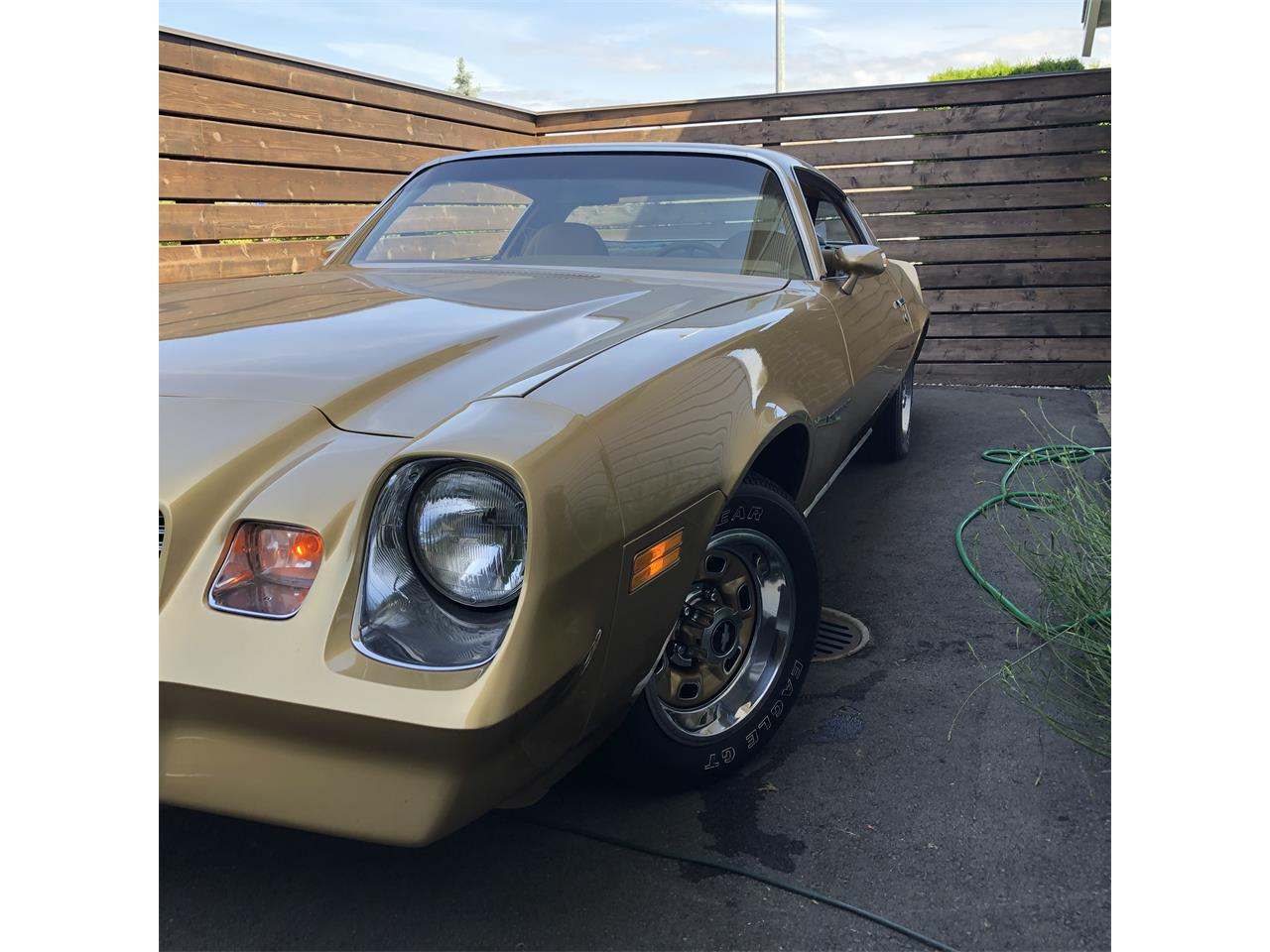 Large Picture of '80 Camaro - Q8FQ