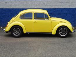 Picture of Classic 1965 Beetle located in CONNELLSVILLE Pennsylvania Offered by Scott C's Classics & Collectibles - Q8JE