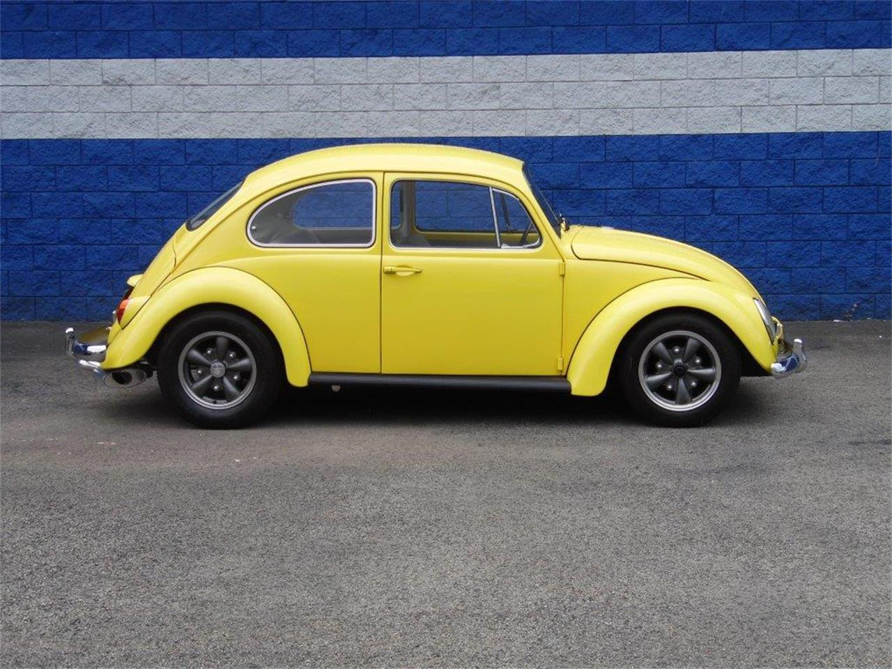 Large Picture of Classic 1965 Volkswagen Beetle located in CONNELLSVILLE Pennsylvania Offered by Scott C's Classics & Collectibles - Q8JE