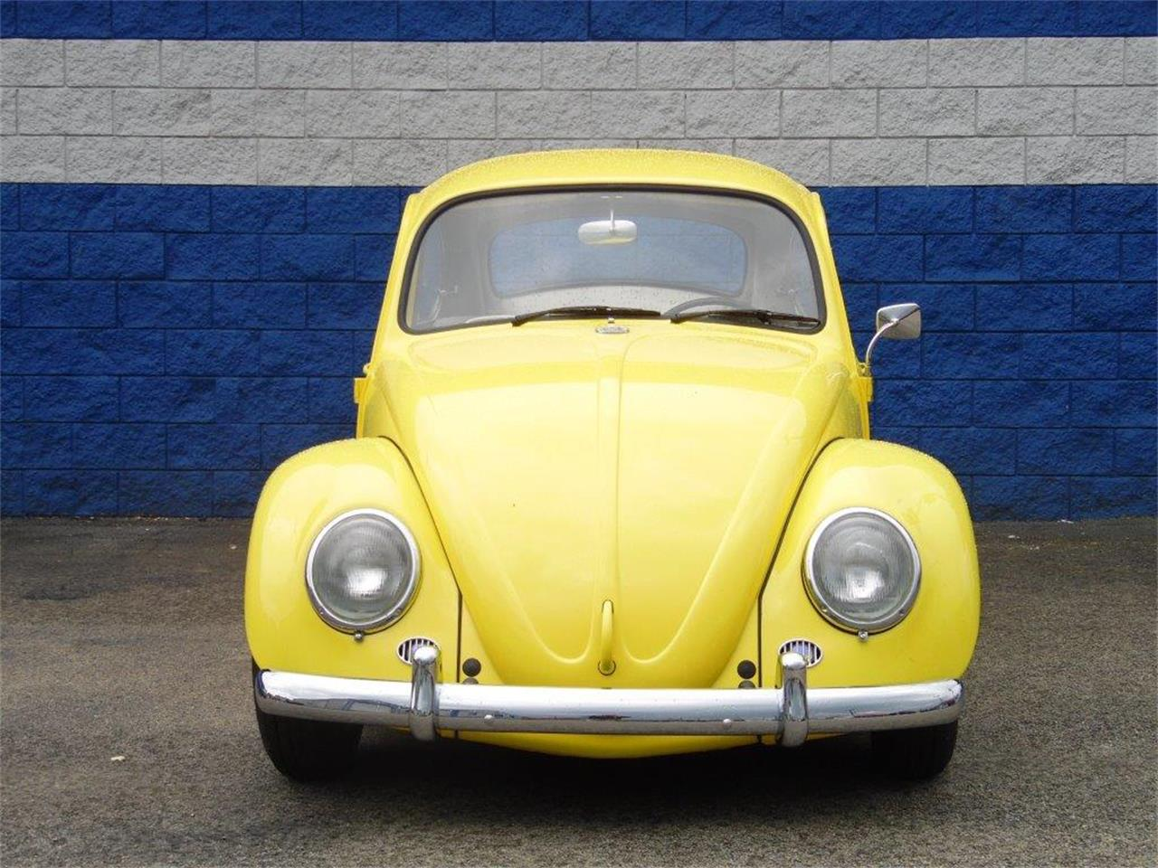 Large Picture of '65 Beetle located in CONNELLSVILLE Pennsylvania - Q8JE