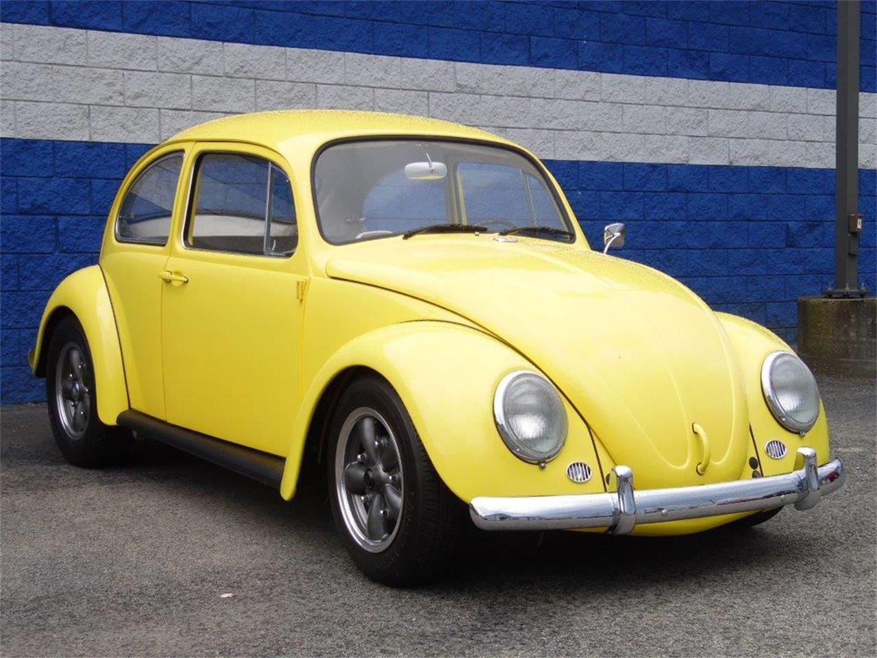 Large Picture of Classic 1965 Beetle located in CONNELLSVILLE Pennsylvania - $16,900.00 Offered by Scott C's Classics & Collectibles - Q8JE
