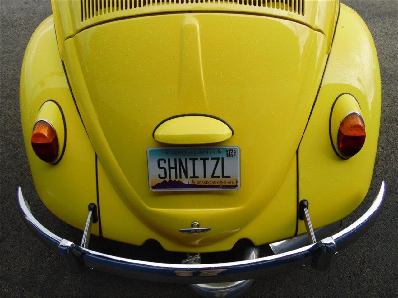 Large Picture of '65 Beetle located in Pennsylvania - $16,900.00 - Q8JE