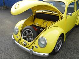 Picture of '65 Volkswagen Beetle - $16,900.00 Offered by Scott C's Classics & Collectibles - Q8JE