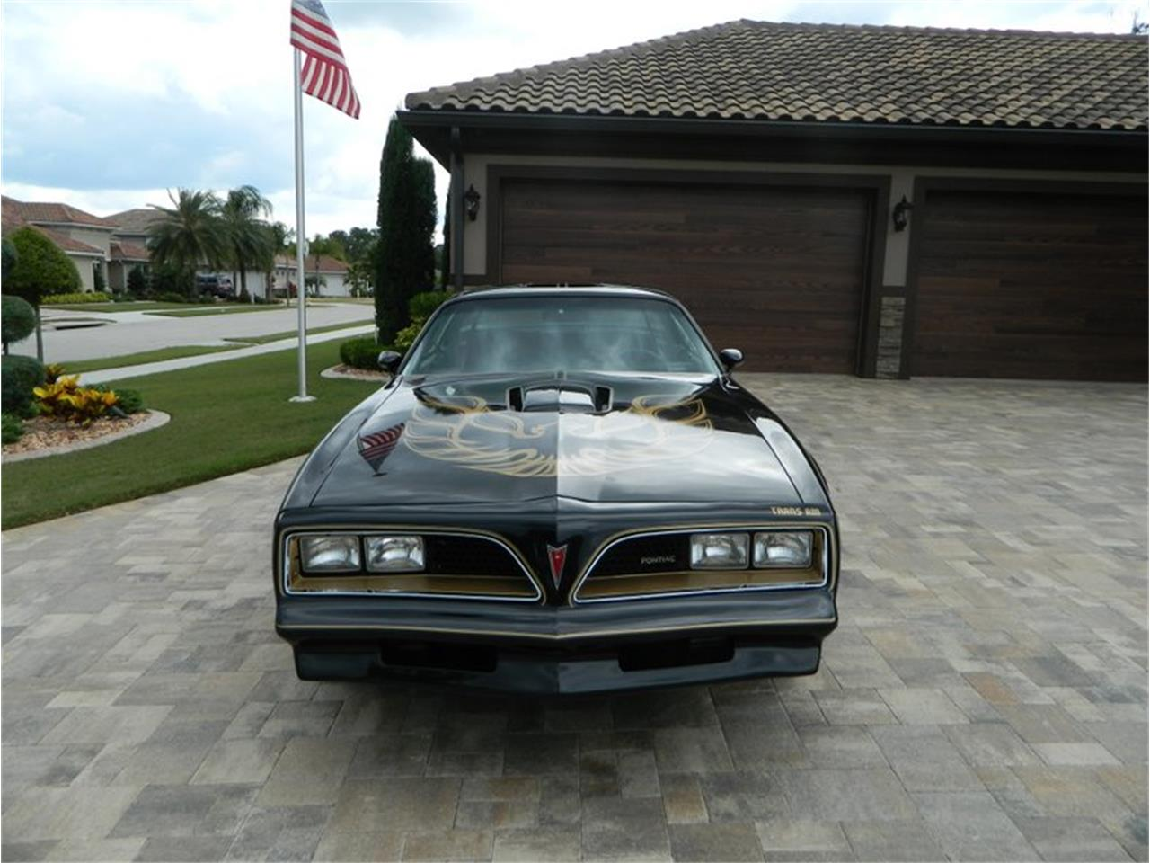 Large Picture of '77 Firebird Trans Am - Q8VL