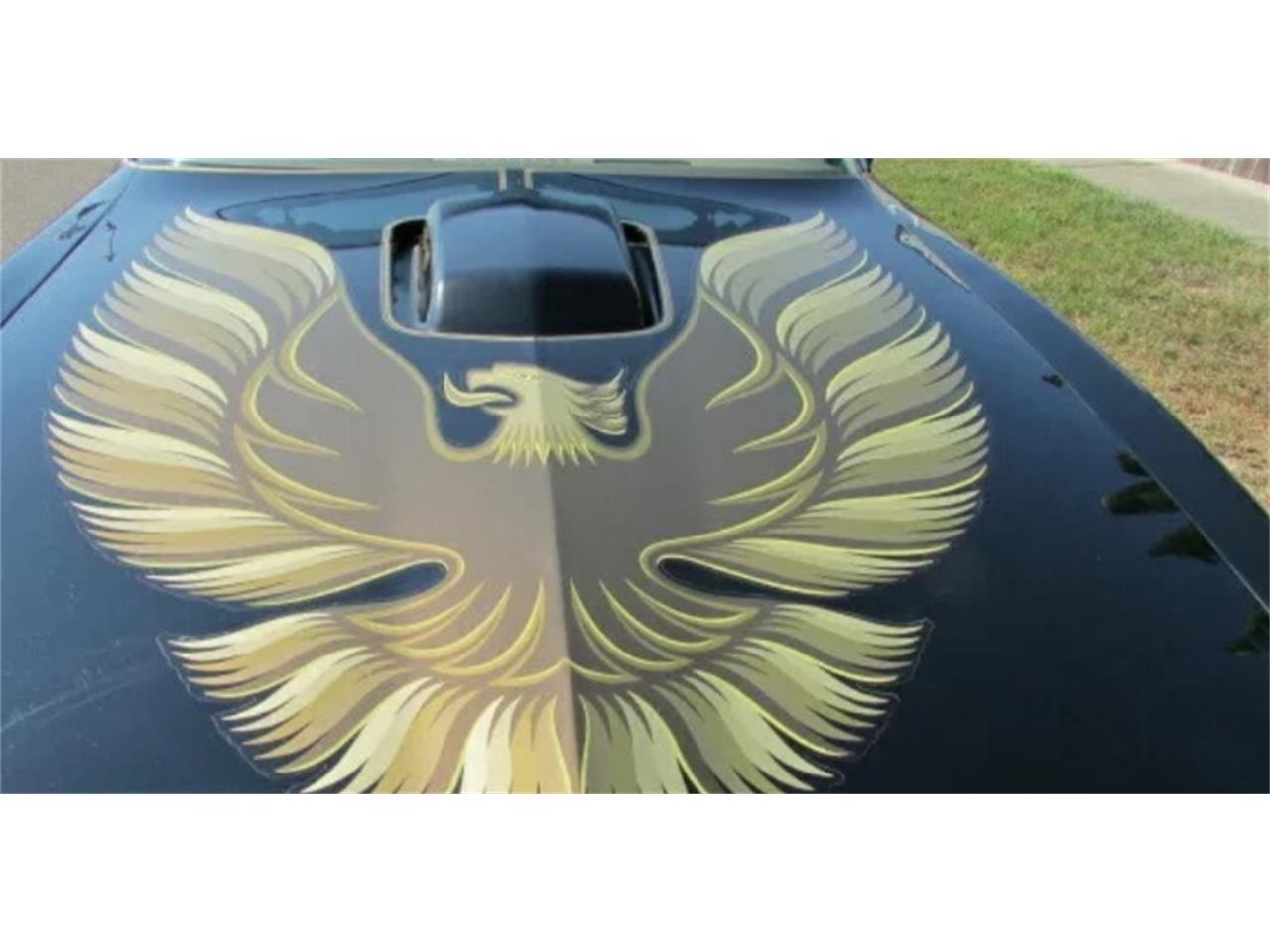 Large Picture of 1979 Firebird Trans Am - Q92C