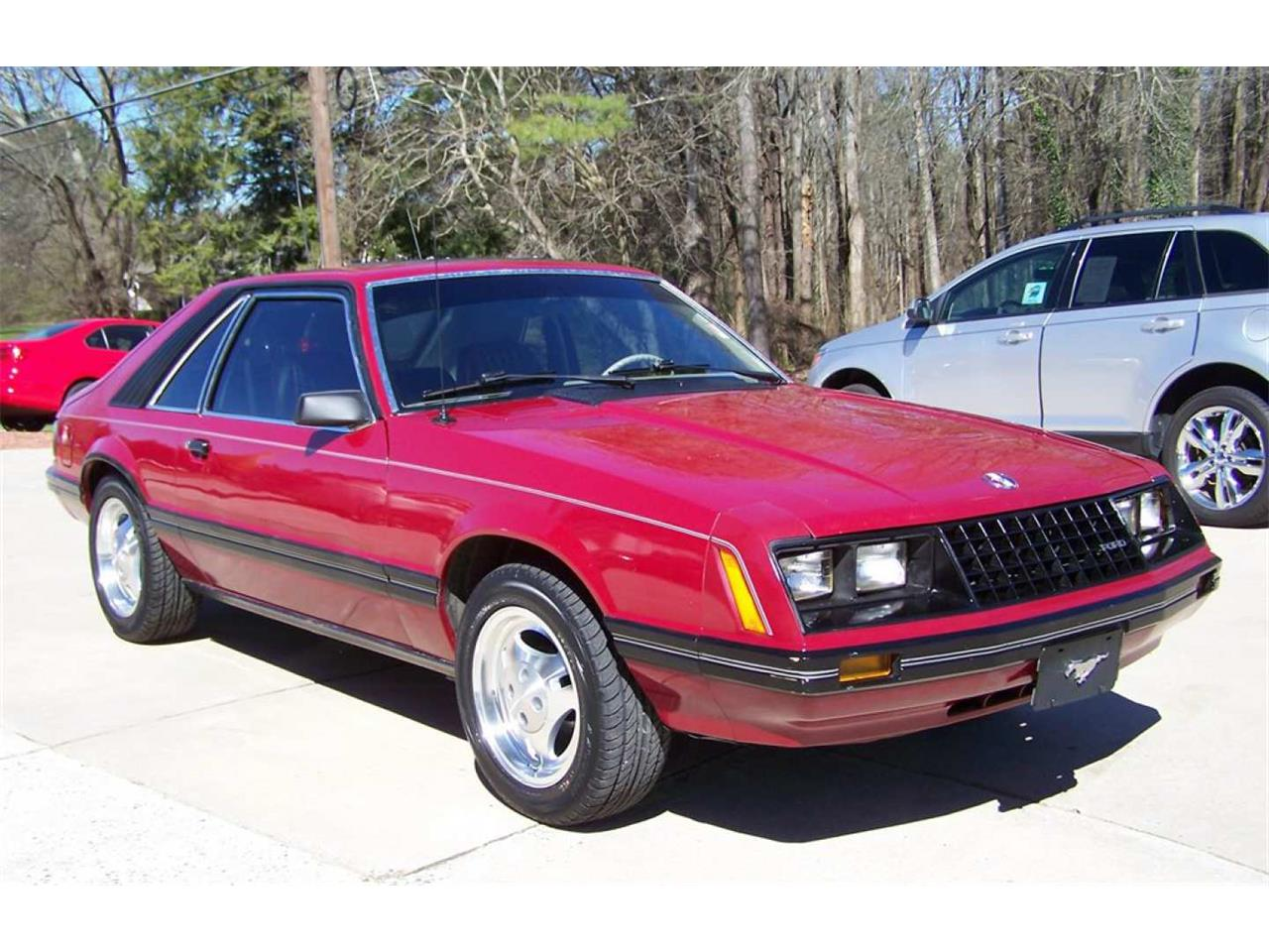 Large Picture of 1981 Ford Mustang located in Louisiana - Q5RH