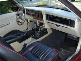 Picture of 1981 Mustang Offered by Vicari Auction - Q5RH