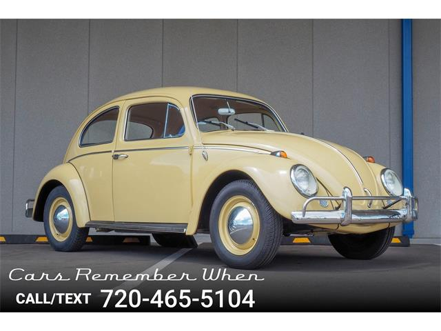 Picture of '64 Beetle - Q9H0